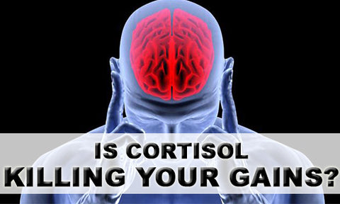 Is cortisol killing your gains