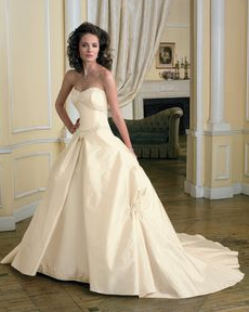 removable skirt gown