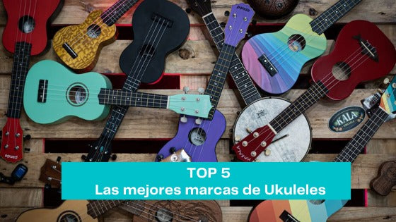 Top 5 Ukulele Brands