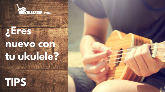 Start playing ukulele today! 3 tips