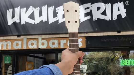 Specialized ukulele store in Mexico.