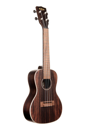 KALA Ukuleles STRIPED EBONY CONCERT