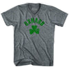 Oxnard City Shamrock Tri-Blend V-neck Womens T-shirt by Ultras