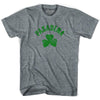 Pasadena City Shamrock Womens Tri-Blend T-shirt by Ultras