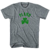 Plano City Shamrock Womens Tri-Blend T-shirt by Ultras