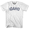 Idaho Union Vintage T-shirt in Grey Heather by Mile End Sportswear