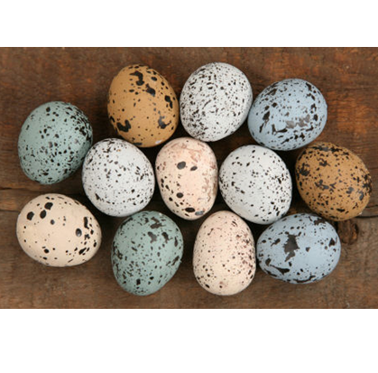 Set of 12 Colorful Specked Lightweight Eggs