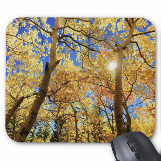 Autumn Photo Mousepad - Fall Leaves Sunshine - Mouse Pad