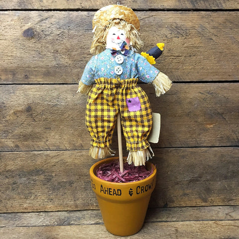 "Scarecrow ""Go Ahead & Crow"" Doll in Flower Pot"