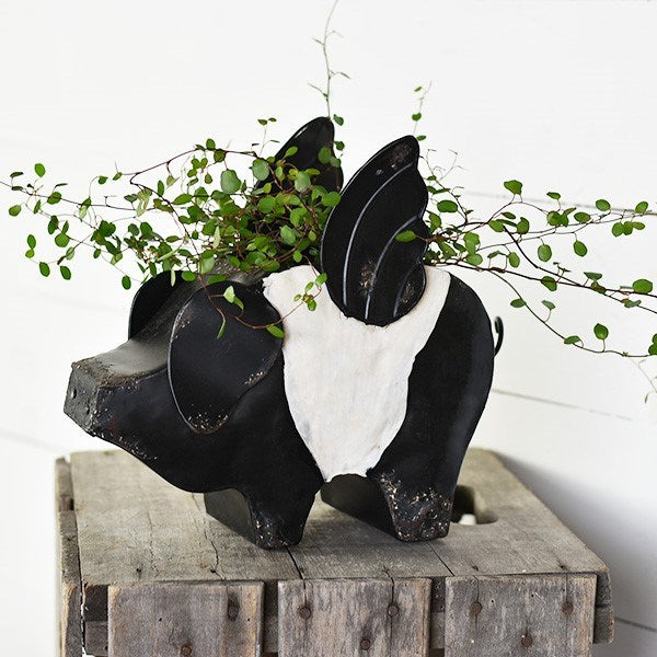 Black and White Flying Pig Planter