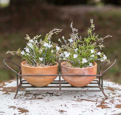 Rustic Garden Caddy with Two Terra Cotta Pots