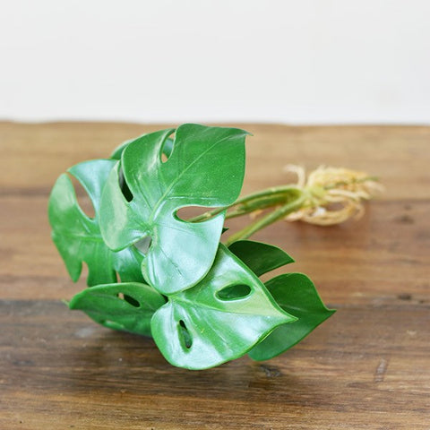 Split Philodendron Faux Botanical Leaves