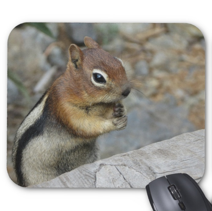 Chipmunk Photo Mousepad - Cute Natural Chipmunk - Mouse Pad