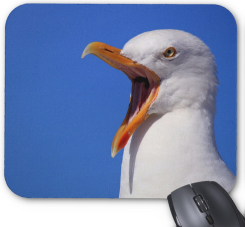 Animal Photo Mousepad - Screamin' Gull - Mouse Pad
