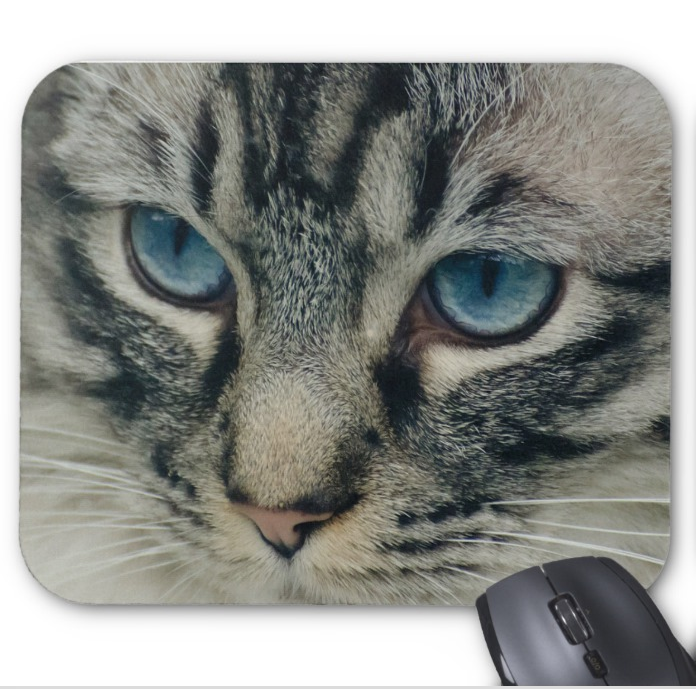 Photograph Mousepad - Blue Eyed Cat - Mouse Pad