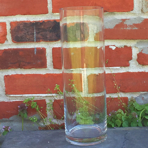 "Clear Glass Cylinder 12"" H perfect for lights and floating arrangements"