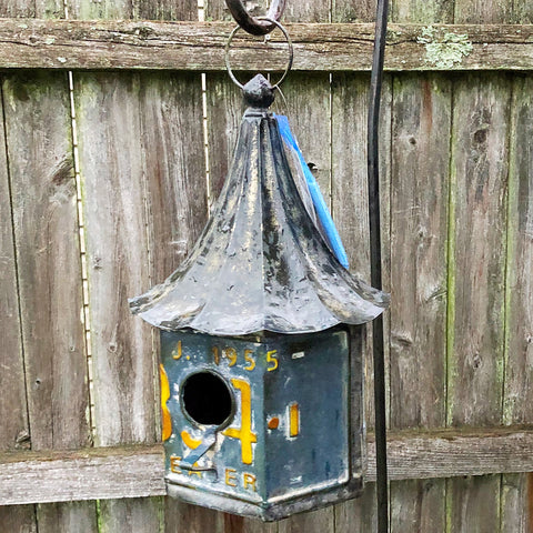 Blue and White License Plate Birdhouse