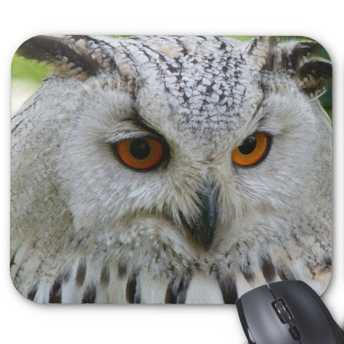Wildlife Photo Mousepad - Wise Owl - Mouse Pad