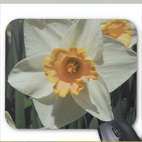 Floral Photo Mousepad - Daffodill Close-up - Mouse Pad