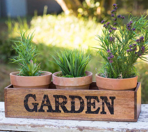 Wooden Garden Caddy with Three Terra Cotta Pots