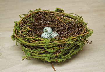 Natural Twig Bird Nest with Baby Eggs