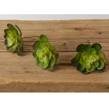 Set of 3 Faux Echeveria Succulents