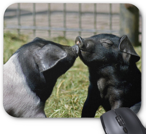 Pig Mousepad - Piglets Kissing - Mouse Pad