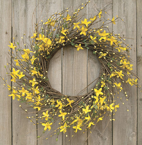 "Star Forsythia and Twig 20"" Wreath"