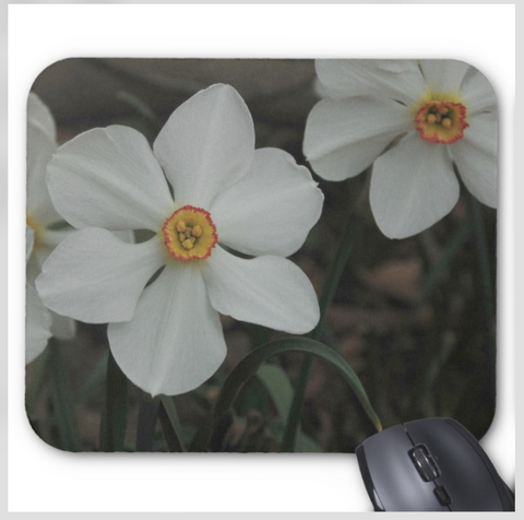 Flower Mousepad - Spring White Daffodils - Mouse Pad