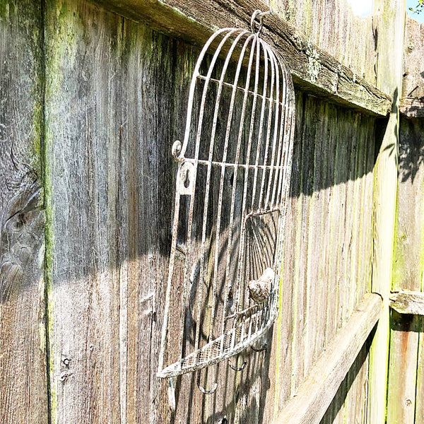 Distressed Birdcage Metal Wall Decor and Hooks