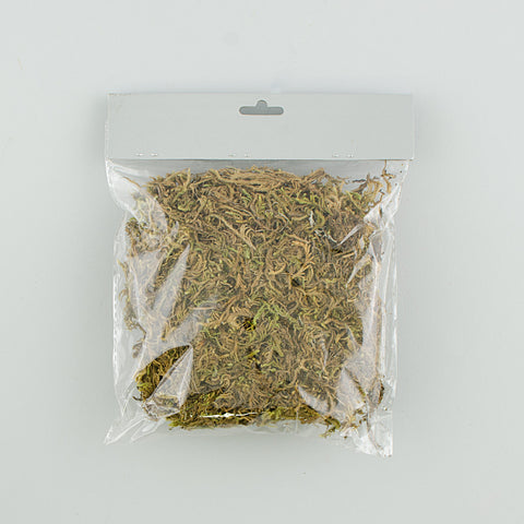 Bag of Dried Green Moss for Floral Crafts and Pot Cover - 30 grams