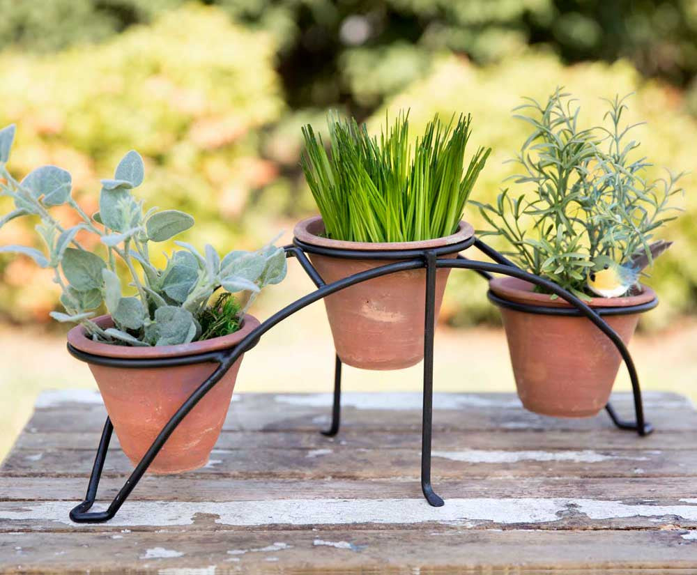 Arched Metal Garden Stand with Three Terra Cotta Pots