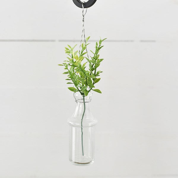 "Hanging Clear Glass Modern 6"" Bottle"
