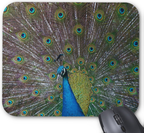 Peacock Photo Mousepad - Peacock in Full Display - Mouse Pad