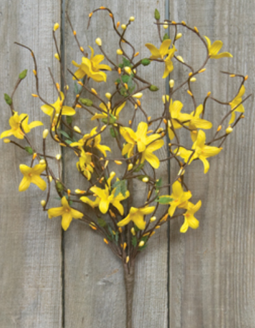 "Spring Yellow Forsythia and Pip 18"" Spray"