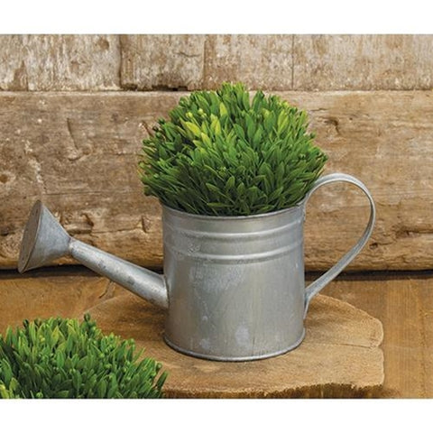 Natural Zinc Small Decorative Watering Can