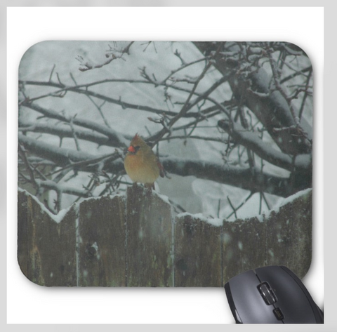 Bird Mousepad - Female Cardinal on Winter Fence - Mouse Pad