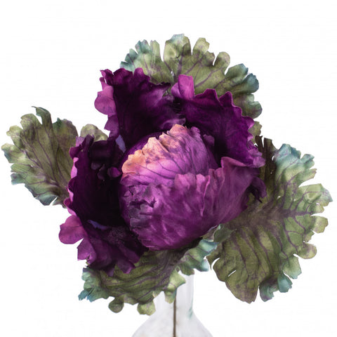 Purple and Green Silk Cabbage on Pick