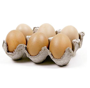 Set of 6 Brown Resin Eggs