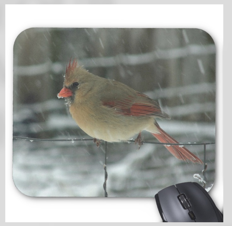 Bird Mousepad - Snowy Female Cardinal - Mouse Pad