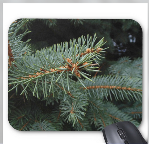 Nature Photo Mousepad -Pine Tree Branch - Mouse Pad