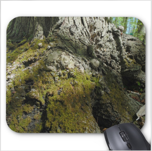 Nature Photo Mouse Pad - North Side Tree - Mouse Pad