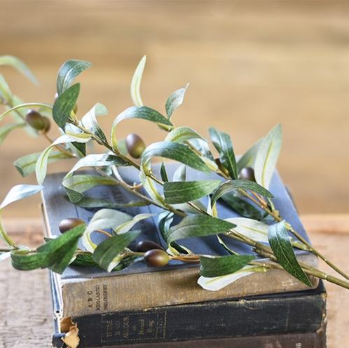 Olive Leaves with Fruit Spray