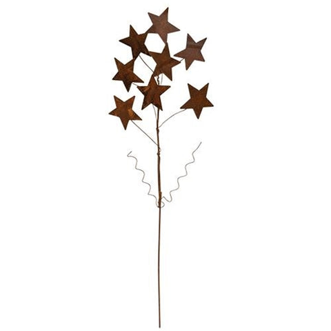 "Rusty Metal Star Cluster 17"" Spray"