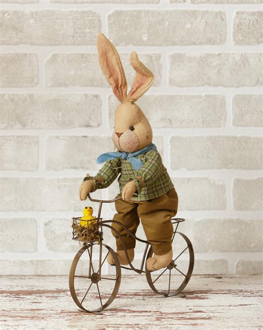 Boy Bunny Riding a Bicycle with Chick Friend