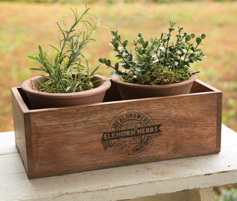 Rustic Herb Wooden Planter with Two Terra Cotta Pots