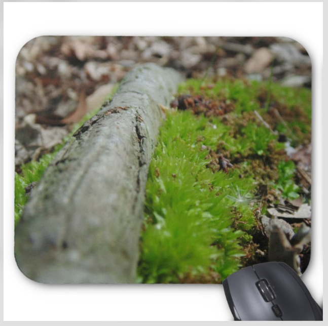Nature Photo Mousepad - Forest Floor Moss - Mouse Pad