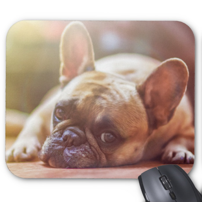 Dog Photo Mousepad - French Bulldog - Mouse Pad