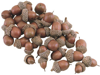 Bag of Resin Acorns - 40 pcs
