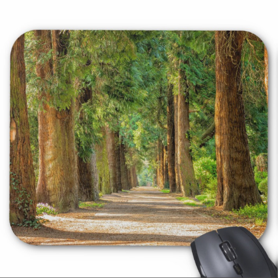 Nature Photo Mouse Pad - Tree Lined Path - mousepad